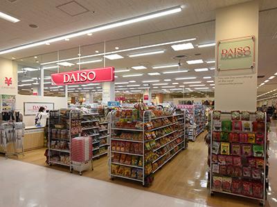 ザ・ダイソー アピタ大和郡山店